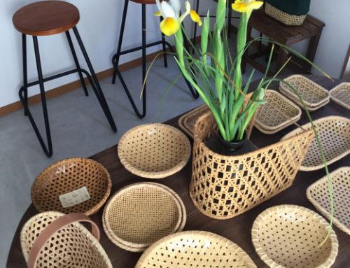 竹聲館の店内のアイリスも咲いて春めいて来ました。